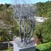 Wellington Botanic Gardens.