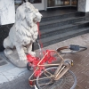 lion statue, Gazelle bike, ribbon.