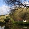 view across pond.