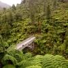 45 min walk from Whanganui river.